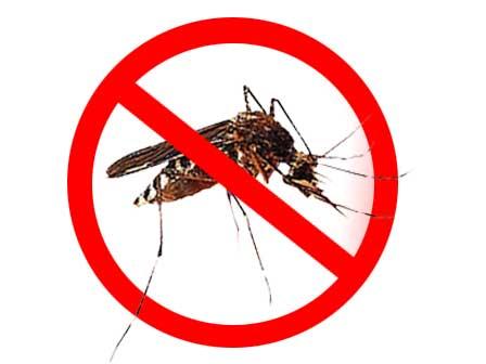 DBD Mewabah, Bupati Bulungan Ajak Masyarakat Perangi Sumber Nyamuk