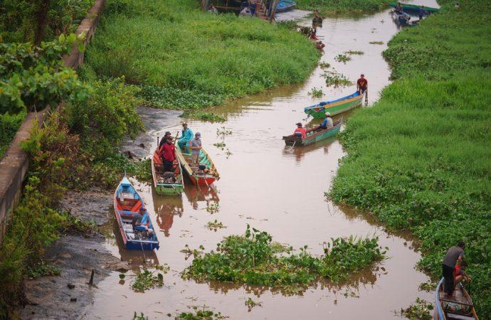 Pembersihan Eceng Gondok di Sungai Selor Bulungan
